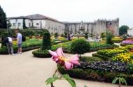Braga, Terra de Tradição e Inovação - imagem #15
